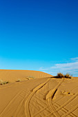 Quad tracks in the dunes of the Erg Chebbi desert, Erg Chebbi, Merzouga, Errachidia, Morocco