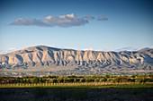 Landscape in the evening light at Chor Wirap, Armenia, Asia