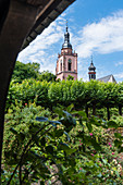 Parish Church of St. Peter and Paul seen from the Electoral Castle, Eltville, Rheingau, Hesse, Germany