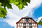 Half-timbered house with flower decoration in the old town, Eltville, Rheingau, Hesse, Germany