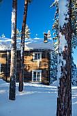 Norway, winter,  Heggenes,surroundings Hotel Herangtunet,  Boutique Hotel,  icicles