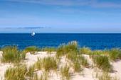 Sailboat on the sea, Strand am Ellenbogen, Sylt, North Sea, Schleswig-Holstein, Germany