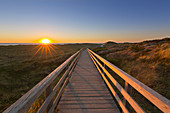 Dune path to the beach, at Kampen, Sylt, North Sea, Schleswig-Holstein, Germany