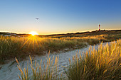 Path to the beach, Lighthouse, Amrum, North Sea, Schleswig-Holstein, Germany