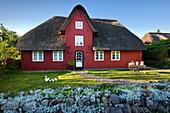 Flower arrangement at the thatched Friesenhaus, Amrum, North Sea, Schleswig-Holstein, Germany