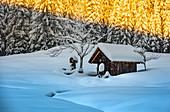 Wooden huts in winter landscape at Barmsee in Krün. Krün, Mittenwald, Bavaria, Germany, Europe