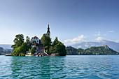 Island Blejski otok, Lake Bled, Triglav National Park, Slovenia