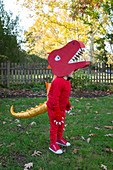 Boy dressed up as red dinosaur