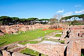 Gymn of Terme di Nettuno (Roman baths of Neptune), Ostia Antica archaeological site, Ostia, Rome province, Lazio, Italy, Europe