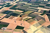 Accurate, colorful fields with wind turbines, approach to the airport, west of Frankfurt, Hesse, Germany