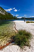 Sandbank am Bohinje See, Triglav Nationalpark, Slowenien