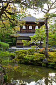 The Silver Pavilion reflected in a pond surrounded by pine trees at the Ginkaku-ji Pure Land Garden, Kyoto, Japan, Asia