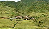 Village amid corn fields near Chongjin, Hamgyong Province, North Korea, Asia