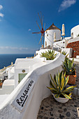 View of windmill overlooking Oia village, Santorini, Cyclades, Aegean Islands, Greek Islands, Greece, Europe