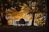 Couple siting on bench on lakeshore under trees in autumn, Gmunden, Upper Austria, Austria