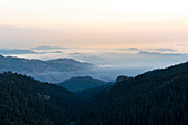 Scenery with mountains and forest at sunrise in El Chico National Park, Hidalgo, Mexico