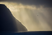 Beautiful natural scenery with silhouette of coastal cliff at sunset, Gasadalur, Faroe Islands