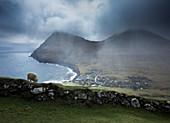 View of sheep grazing near Gjogv village on seashore, Faroe Islands