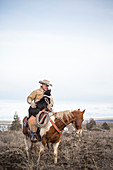 Clear sky over rancher horseback riding with pet dog, Oregon, USA
