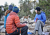 Backpackers watch a deer during breakfast at Grouse Lake, their first camp on a two-week trek of the Sierra High Route in Kings Canyon National Park in California. The 200-mile route roughly parallels the popular John Muir Trail through the Sierra Nevada Range of California from Kings Canyon National Park to Yosemite National Park.