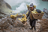 Sulfur miner carrying heavy load of Sulphur at top of Kawah Ijen Volcano, Java, Indonesia