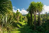 Weg entlang den Hamurana Springs, Rotorua, Bay of Plenty, Nordinsel, Neuseeland, Ozeanien