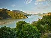 Pelorus Sound, Tasman, Südinsel, Neuseeland, Ozeanien