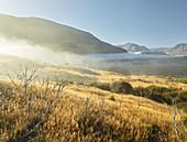 Purple Hill, Arthur's Pass National Park, Canterbury, South Island, New Zealand, Oceania