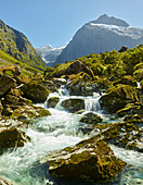 Mount Talbot, Hollyford River, Fiordland Nationalpark, Southland, Südinsel, Neuseeland, Ozeanien