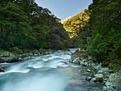 Hollyford River, Fiordland Nationalpark, Southland, Südinsel, Neuseeland, Ozeanien