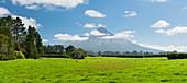 Mount Taranaki, nahe Statford, Taranaki, Nordinsel, Neuseeland, Ozeanien