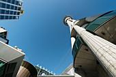 Wolkenkratzer und Skytower, Auckland, Nordinsel, Neuseeland, Ozeanien