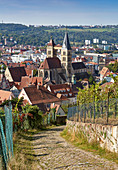 Vineyards, cathedral and old town of Esslingen, Baden Würtenberg, Germany
