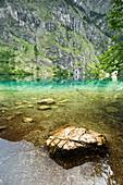 Obersee mit Felsstein im Wasser, Nationalpark Berchtesgaden, Bayern, Deutschland