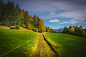 Trail through the pastures at the Geschwandtnerbauer in Partenkirchen.