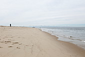 Beach at Meadow Beach, Cape Cod, Massachusetts, USA
