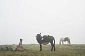 Das Mädchen, das an legt, ziehen sich vom Esel auf dem ländlichen Gebiet zurück
