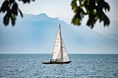 Sailboat on sunny, tranquil Lake Geneva, Cully, Vaud, Switzerland