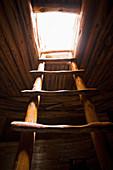 Ladder of a Native American Cliff Dwelling,Mesa Verde, Colorado, USA