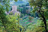 Steinbauernhof bei Montefioralle, Panzano, Toskana, Italien
