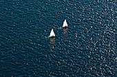 Sailboats in the Ocean, Seattle, Washington, USA