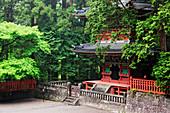 Base Floor of an Asian Pagoda, Nikko, Japan