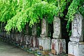 Row of Spiritual Statuary, Honshu island, Japan, Asia