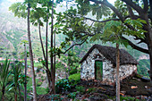 Cape Verde, Island Santo Antao, landscapes, mountains, green valley,papayatree, traditional shed