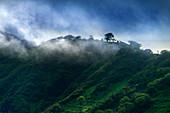 Morgennebel in den grünen Bergen der Insel Santiago, Kap Verde