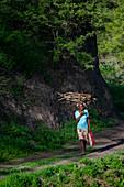 Cape Verde, Island Santiago, women carrying wood on her head.\n\n\n\n\n\n\n\n\n\n\n\n\n\n\n\n\n\n\n\n\n\n\n\n\n\n\n\n\n\n\n\n\n\n\n\n\n\n\n\n\n\n\n\n\n\n\n\n\n\n\n\n\n\n\n\n\n\n\n\n\n\n\n\n\n\n\n\n\n\n\n\n\n\n\n\n\n\n\n\n\n\n\n\n\n\n\n\n\n\n\n\n\n\n\n\n\n\n\n\n\n\n\n\n\n\n\n\n\n\n\n\n\n\n\n\n\n\n\n\n\n\n\n\n\n\n\n\n\n\n\n\n\n\n\n\n\n\n\n\n\n\n\n\n\n\n\n\n\n\n\n\n\n\n\n\n\n\n\n\n\n\n\n\n\n\n\n\n\n\n\n\n\n\n\n\n\n\n\n\n\n\n\n\n\n\n\n\n\n\n\n\n\n\n\n\n\n\n\n\n\n\n\n\n\n\n\n\n\n\n\n\n\n\n\n\n\n\n\n\n\n\n\n\n\n\n\n\n\n\n\n\n\n\n\n\n\n\n\n\n\n\n\n\n\n\n\n\n\n\n\n\n\n\n\n\n\n\n\n\n\n\n\n\n\n\n\n\n\n\n\n\n\n\n\n\n\n\n\n\n\n\n\n\n\n\n\n\n\n\n\n\n\n\n\n\n\n\n\n\n\n\n\n\n\n\n\n\n\n\n\n\n\n\n\n\n\n\n\n\n\n\n\n\n\n\n\n\n\n\n\n\n\n\n\n\n\n\n\n\n\n\n\n\n\n\n\n\n\n\n\n\n\n\n\n\n\n\n\n\n\n\n\n\n\n\n\n\n\n\n\n\n\n\n\n\n\n\n\n\n\n\n\n\n\n\n\n\n\n\n\n\n\n\n\n\n\n\n\n\n\n\n\n\n\n\n\n\n\n\n\n\n\n\n\n\n\n\n\n\n\n\n\n\n\n\n\n\n\n\n\n\n\n\n\n\n\n\n\n\n\n\n\n\n\n\n\n\n\n\n\n\n\n\n\n\n\n\n\n\n\n\n\n\n\n\n\n\n\n\n\n\n\n\n\n\n\n\n\n\n\n\n\n\n\n\n\n\n\n\n\n\n\n\n\n\n\n\n\n\n\n\n\n\n\n\n\n\n\n\n\n\n\n\n\n\n\n\n\n\n\n\n\n\n\n\n\n\n\n\n\n\n\n\n\n\n\n\n\n