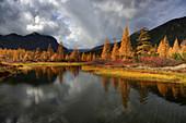 Sonniger Tag an einem namenlosen Nebenfluss, Oblast Magadan, Sibirien, Russland