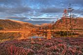 Sonniger Morgen am Jack-London-See, Oblast Magadan, Sibirien, Russland