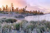 Nebeliger Morgen am Jack-London-See, Oblast Magadan, Sibirien, Russland