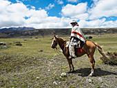 Einheimischer auf einem Pferd in der hohen Paramolandschaft, Nationalpark Cotopaxi, Anden-Berge, Ecuador, Südamerika